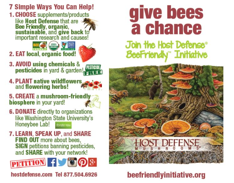 7 Ways to Help Save Bees